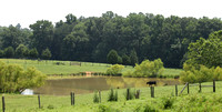 02MB JRR Ranch Water Hole VA 130717-A