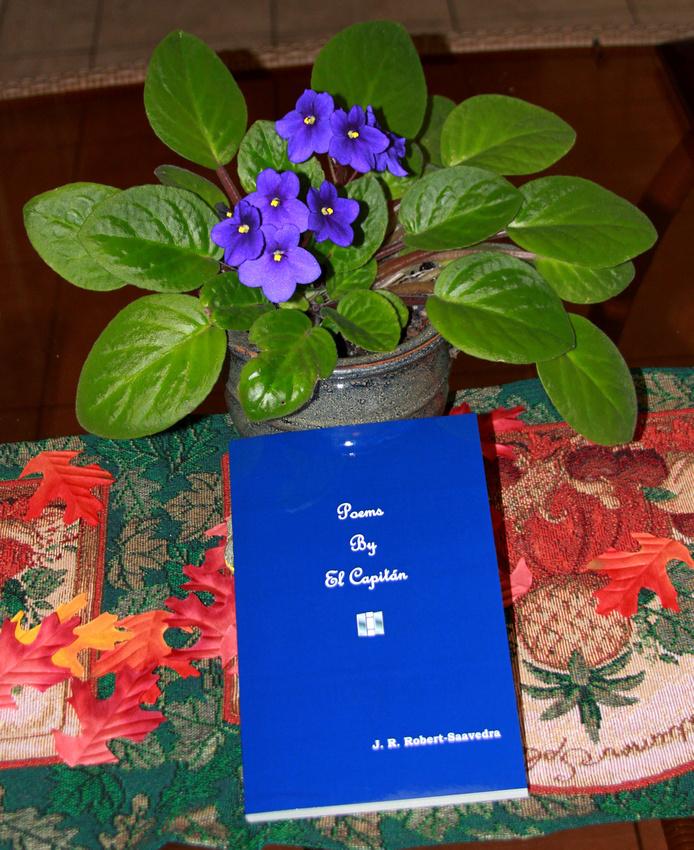 14M JRR Poetry Book VA 121125-A